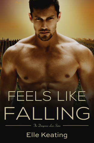 Feels Like Falling by Elle Keating